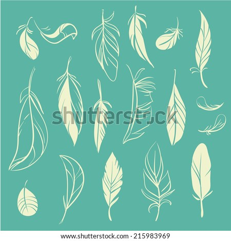 Vector set of different hand drawn feathers  - stock vector