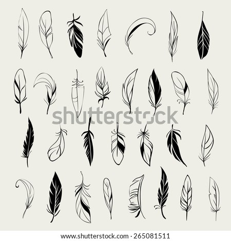 Vector set of different vintage hand drawn feathers - stock vector