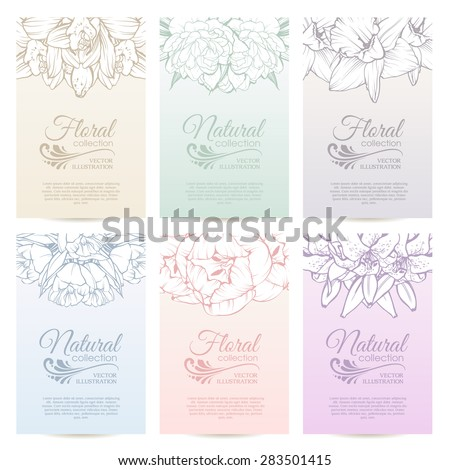 Vector set of elegant templates banners cards labels tags calendar pages with color linear floral design. Background with flowers lily tulip orchid peony - stock vector
