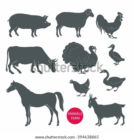 vector set of farm animals cow, sheep, goat, pig, horse. Set of detailed quality vector silhouettes of chicken, rooster, goose, turkey, duck. Vector Illustrations isolated on white background. - stock vector