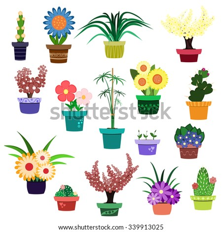 Vector set of flowers and house plants in pots isolated on white background.