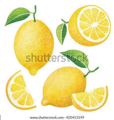 Vector set of fresh ripe lemons with leaves.Different styles of lemons on white background. - stock vector