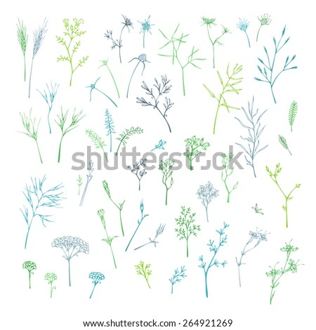 Vector set of grass and floral elements. Blue and green nature design elements. - stock vector