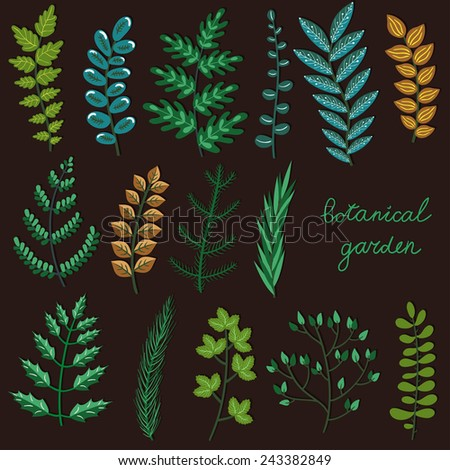 Vector set of hand drawing branches. Beautiful floral elements for your design. Botanical garden collection. - stock vector