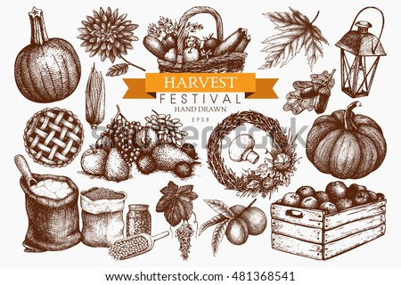 Vector set of hand drawn autumn illustration. Traditional harvest festival design elements. Vintage fall sketch collection on white background. Outlines