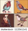 vector set of hand drawn cards with colorful birds - stock vector