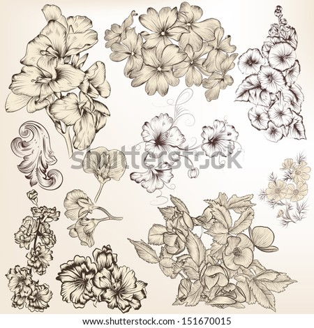 Vector set of high detailed hand drawn flowers for design - stock vector