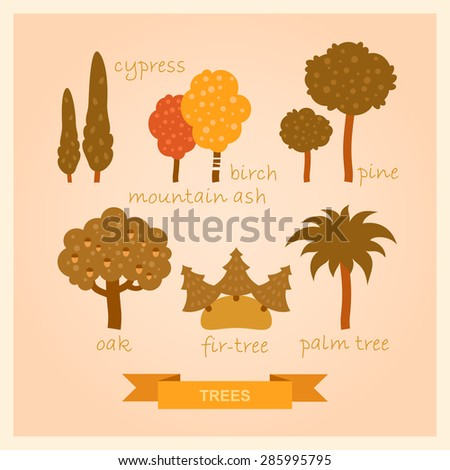 vector set of illustrations of trees - stock vector