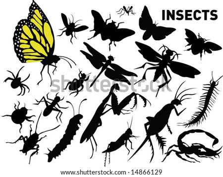 vector set of insects - stock vector