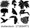 vector set of jungle icons with tropical trees, plants and leaves, Rainforest  Frog, Toucan, butterflies, humming-birds and anaconda - stock vector