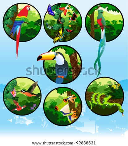 vector set of labels with jungle animals
