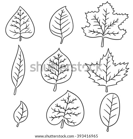 vector set of leaves