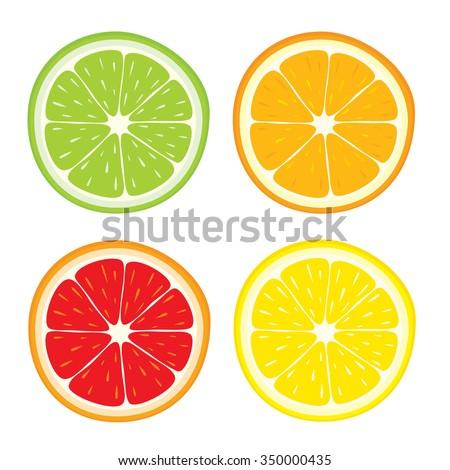 Vector set of lemon, orange, lime, grapefruit slices on white background. - stock vector