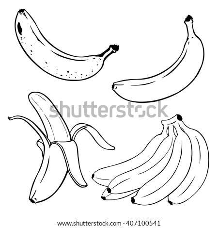 Vector Set of Line-Art  Bananas. Overripe Banana, Single Banana , Peeled Banana, Bunch of Bananas.