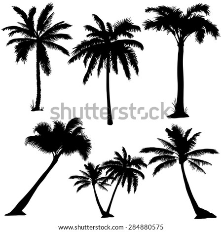 Vector Set of  Palms Silhouettes - stock vector