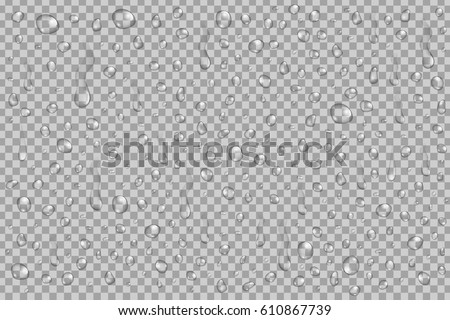 Vector set of realistic water droplets on the transparent background.