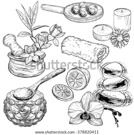 Vector set of spa and Beauty care sketch, organic products  - stock vector