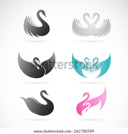 Vector set of swan design on white background - stock vector