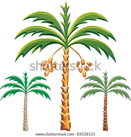 vector set of the date palm trees, Various color options