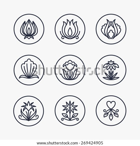 Vector Set of Thin Line Floral Design Elements for Logos