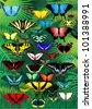 vector set of tropical butterflies - stock vector