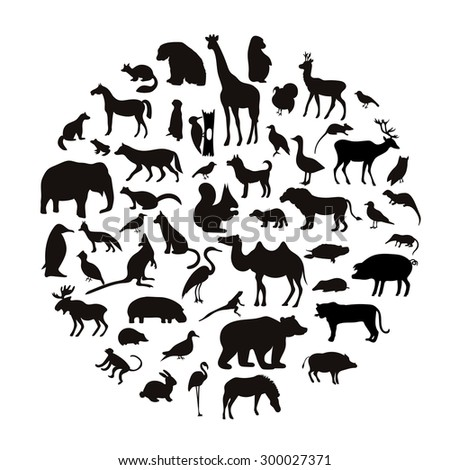 Vector set of very detailed animal silhouettes on isolated background. - stock vector