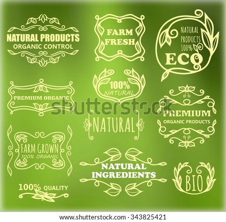 Vector set of vintage frames for eco products - stock vector