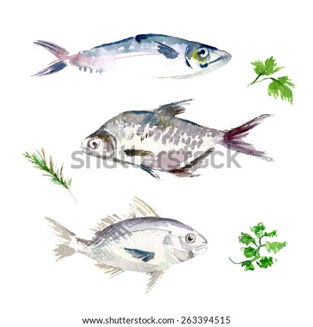 Fish painting stock images royalty free images vectors for Cooking white fish