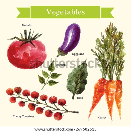 Vector set: vegetables - stock vector