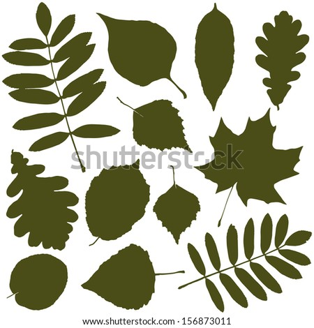 vector set with autumn leaves - stock vector