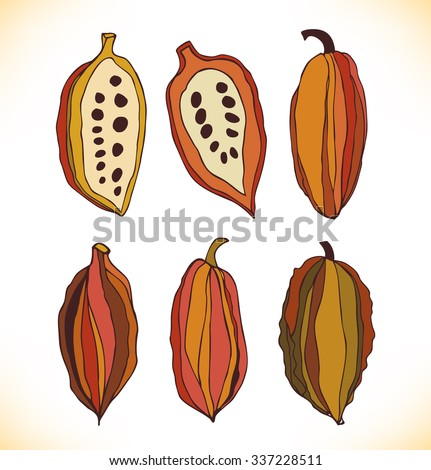 Vector set with drawn isolated cocao beans. Beauty collection with decorative silhouettes of chocolate cocoa beans - stock vector