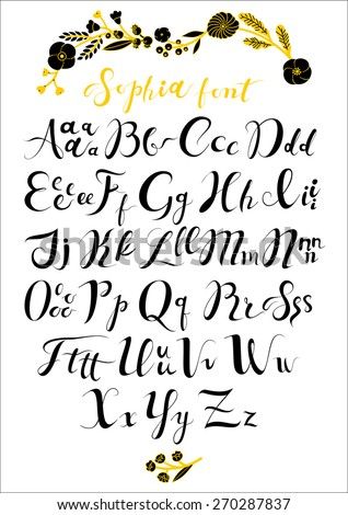 vector set with hand written abc letters calligraphy collection font from my big font collection