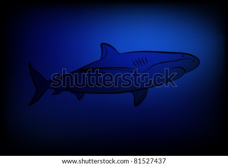 Vector shark at ocean