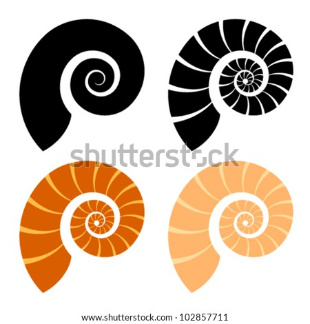 vector shell silhouette - stock vector