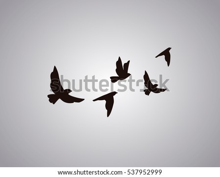 Birds Flying Stock Images, Royalty-Free Images & Vectors ...