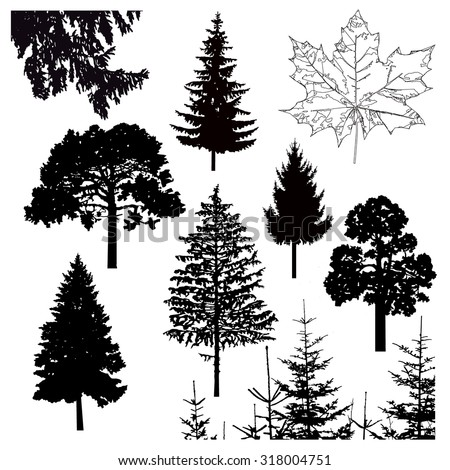 Vector silhouette of different trees. Can be used as poster, badge, emblem, banner, icon, sign. - stock vector