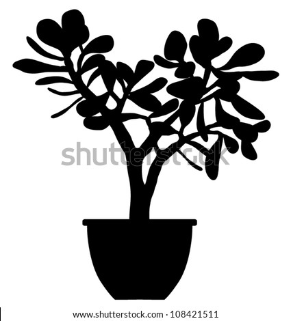 Vector Silhouette of succulent plant isolated on white background - stock vector