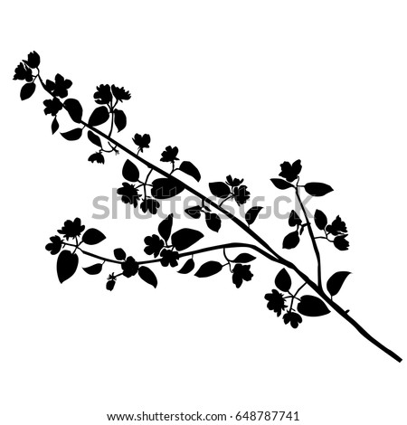 cats on appletrees vector silhouette of the branches apple trees with flowers black color isolated stempel