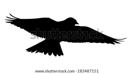 Vector silhouette of the Skylark singing in the courtship flight.