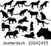 vector silhouette of wild cats - stock vector