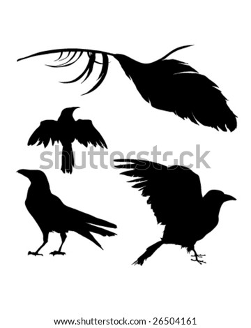 Bird Pheasant Vector Icons Silhouettes Set Stock Vector ...