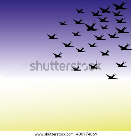 Vector silhouettes: a flock of birds, crows, swans, geese./ Silhouette a flock of birds. Vector illustration.