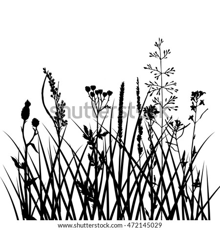 Garden Weeds Stock Images Royalty Free Images Amp Vectors