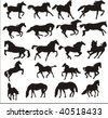 Vector-silhouettes of horses - stock vector