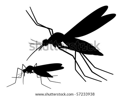 """Vector silhouettes of Mosquitoes pair, blood sucking insect.  """"Full compatible"""" - stock vector"""
