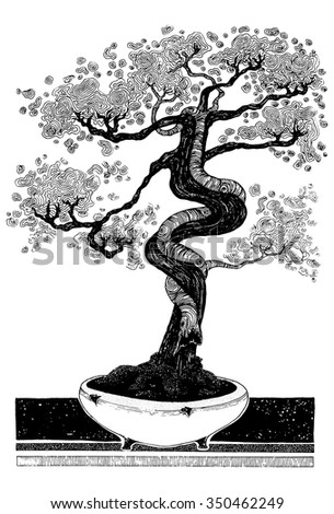 vector simple black on white drawing - BONSAI - detailed decorative art