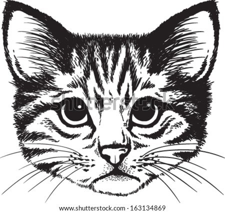 Vector sketch of a stylized kitten's face - stock vector