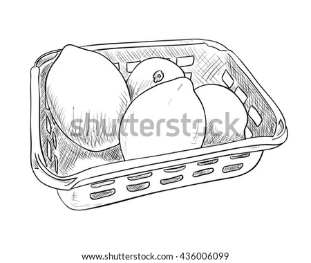 Vector sketch of plastic container with lemons. Food box with lemons. Hand draw illustration. - stock vector