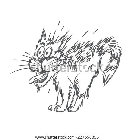 Vector sketch of scared cat - stock vector