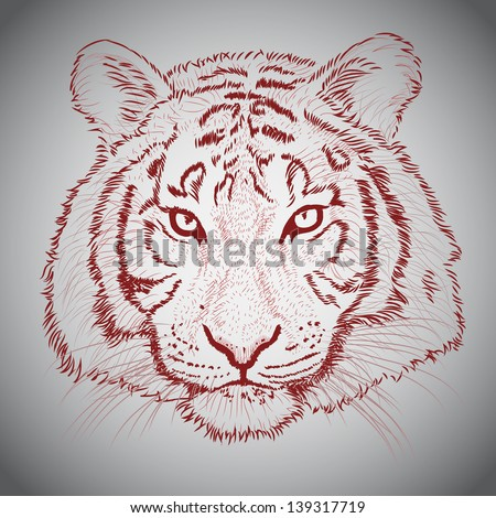 Vector sketched tiger face - stock vector